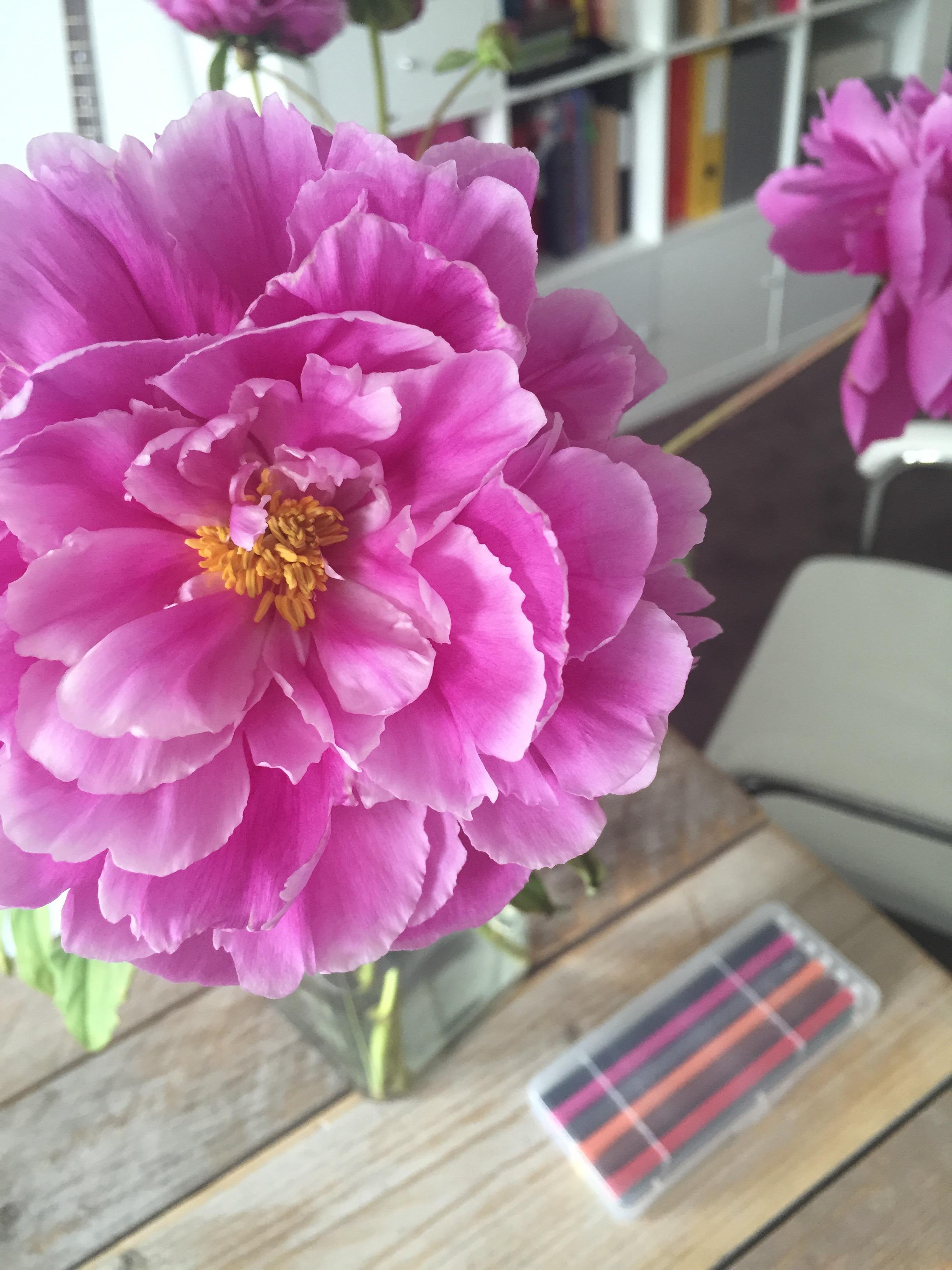 Feng shui kleuren amazing woonkamer ideeen kleuren feng for Feng shui kleuren